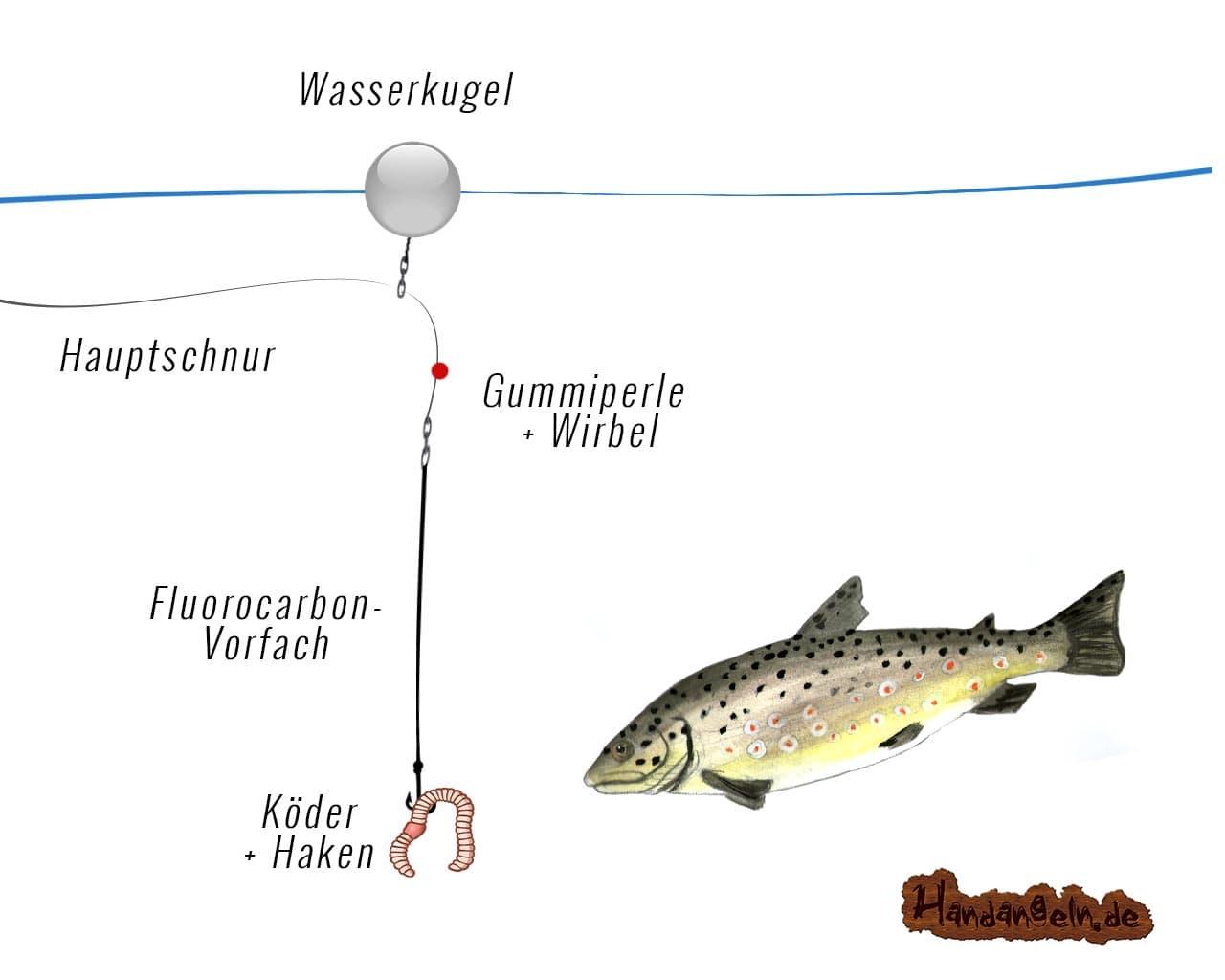 Wasserkugel Angelmontage Forelle ohne Pilotkugel Wirbelöse Illustration