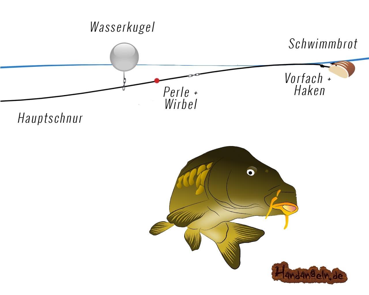 Illustration Wasserkugel Montage Karpfen Schwimmbrot