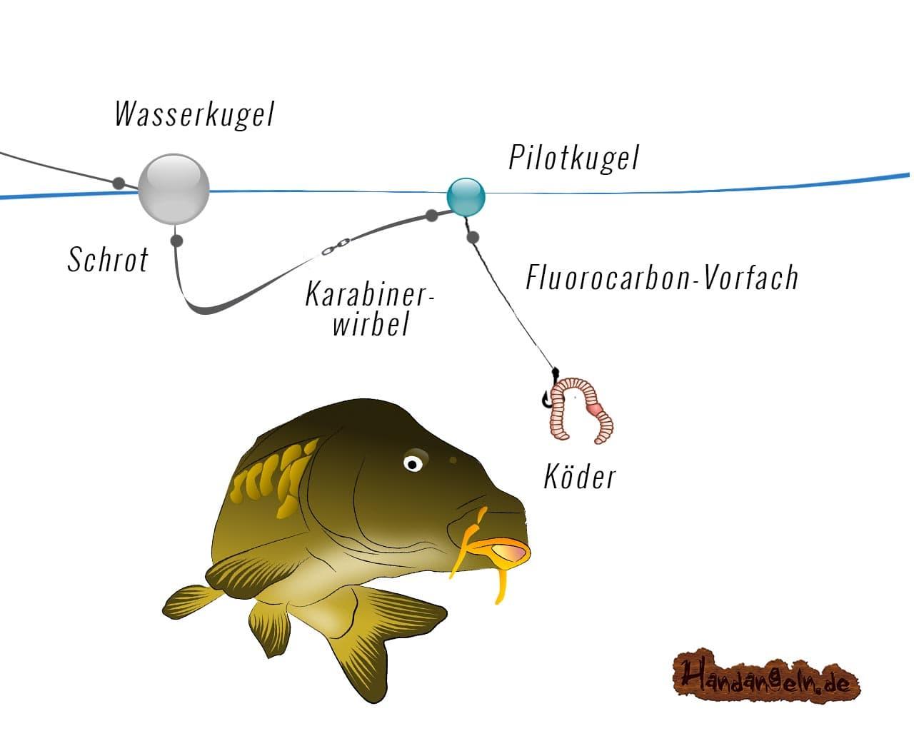 Illustration Wasserkugel Montage Karpfen mit Pilotkugel