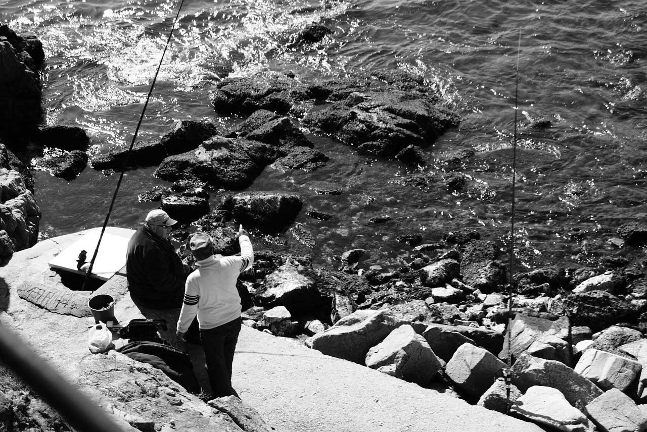 Wolfsbarsch angeln an der Kueste mit Kunstkoeder