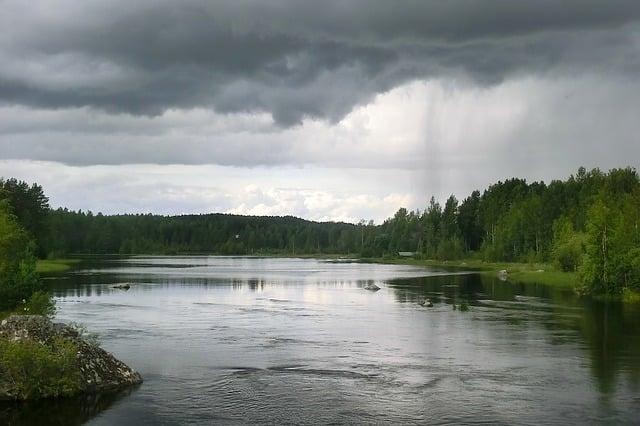 Zander - Lebensraum - Fluss Seen - trübes Wasser