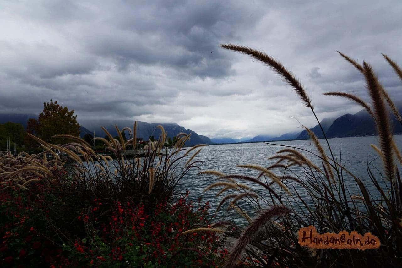 Zander angeln bei Wind See Schweiz