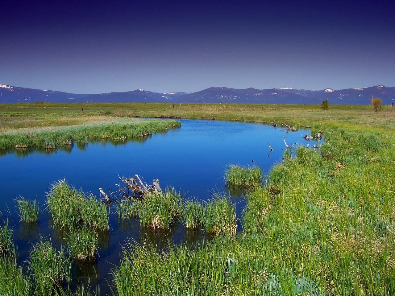 Zanderangeln - Flüsse