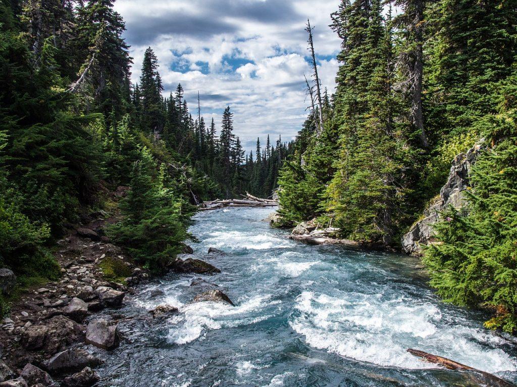 Zanderangeln - Fluss