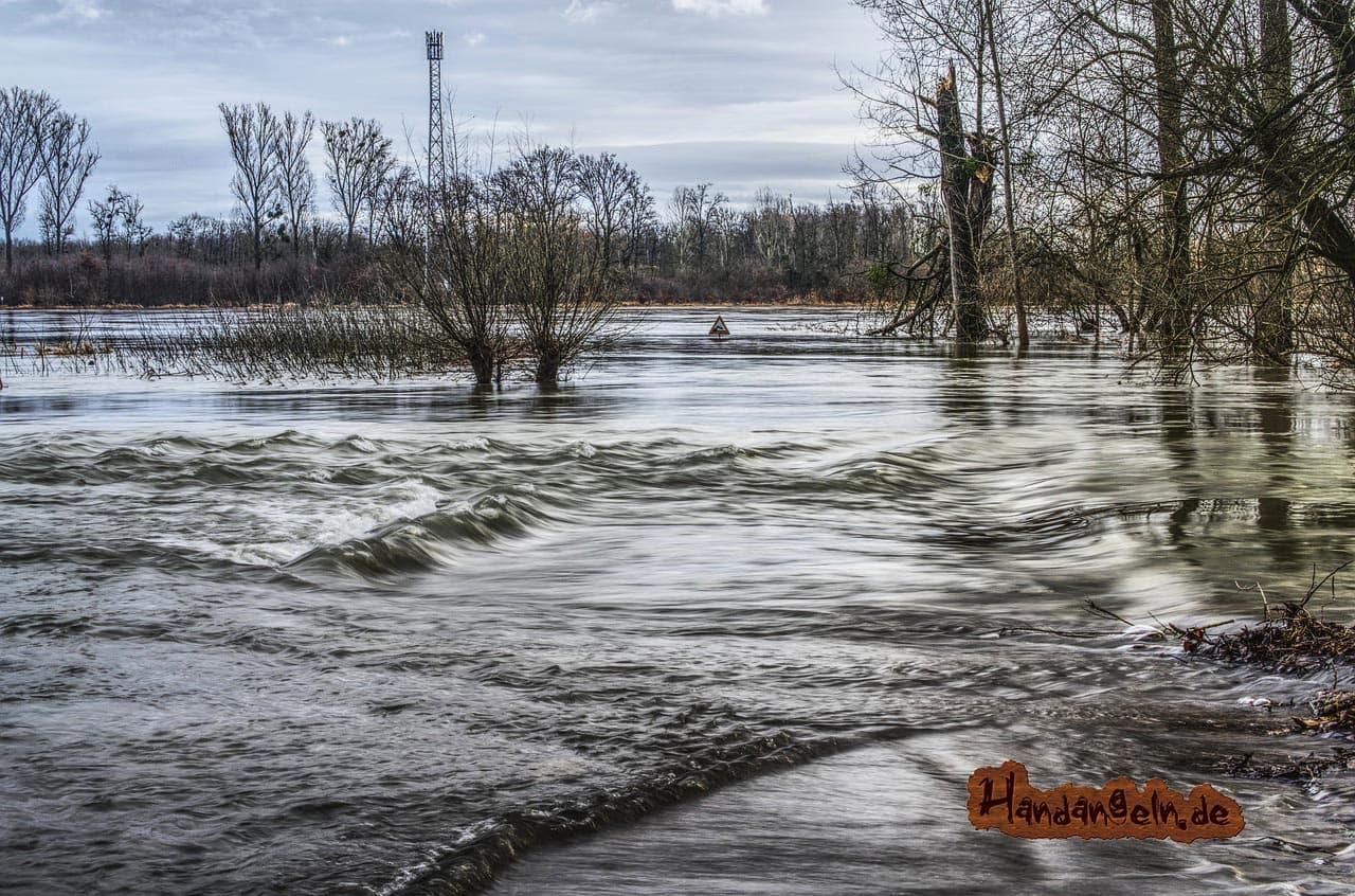 Zanderangeln am Fluss Hochwasser Rhein