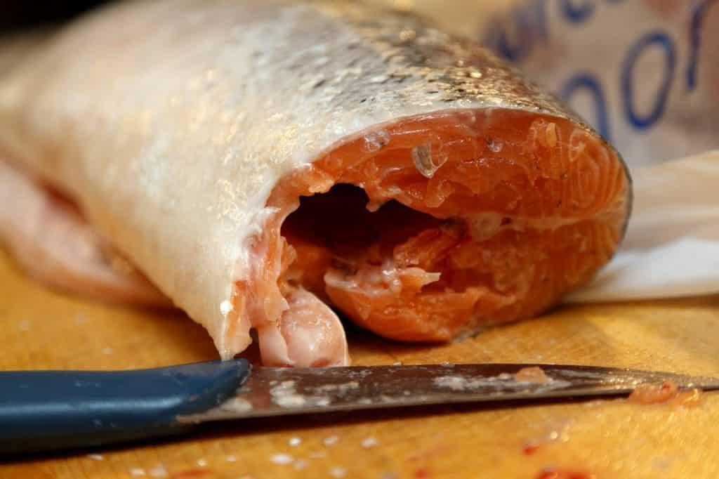 Zanderköder Fischfilet