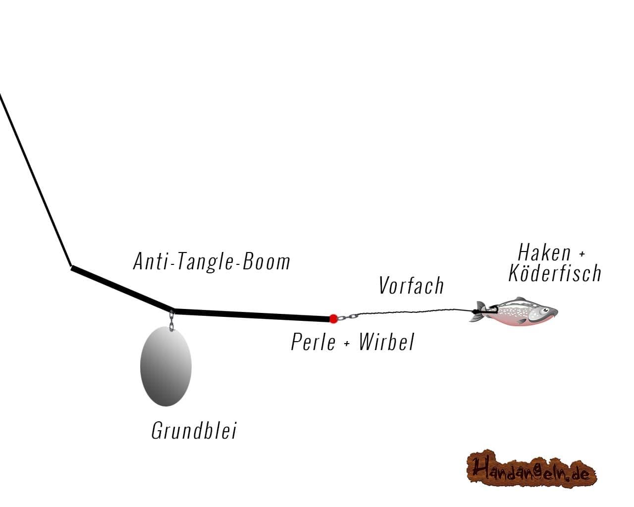beste Grundmontage Zander angeln Grund See Fluss Rhein